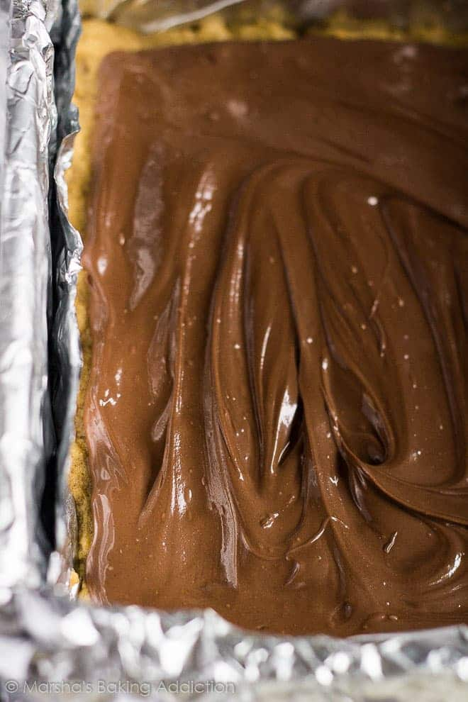 Close-up of shiny, thick Nutella centre in Nutella Stuffed Pumpkin Cookie Bars.