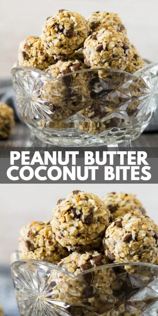 No-Bake Peanut Butter Coconut Energy Bites